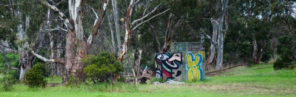 all-those-shapes_-_caper_-_bird-in-the-forest_-_heidelberg-west.jpg