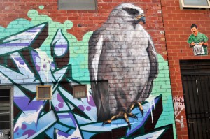 all-those-shapes_-_ling_-_graff-hawk_-_fitzroy