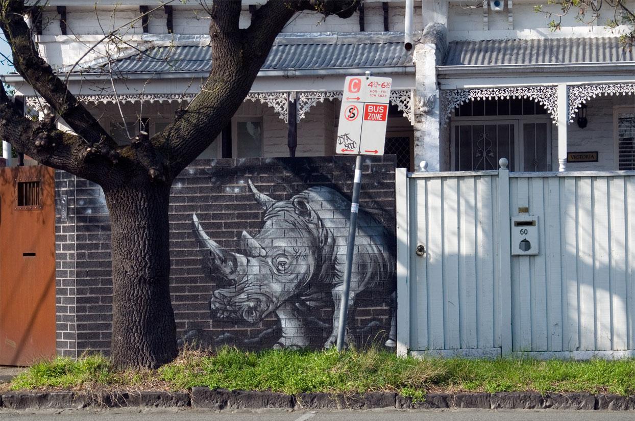 all-those-shapes_-_views_-_shadow-rhino_-_windsor